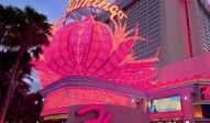 flamingo casino las vegas