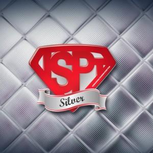Logo-Silver-BDF-1024x675