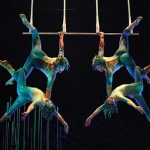Cirque-du-soleil-trapeze-home_300x300_scaled_cropp