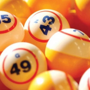 bingo cropp