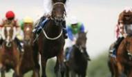 pontefract racing