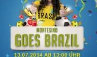 montesino goes brazil