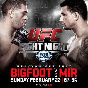 ufc fight night silva mir