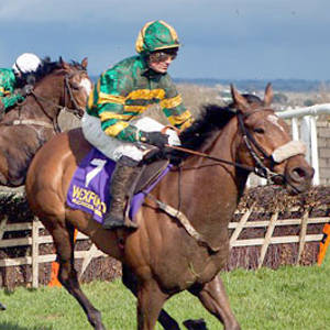 wexford horse race 300x300