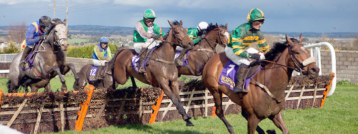 wexford horse racing