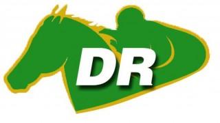 DR Logo