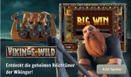Vikings_go Berzerk