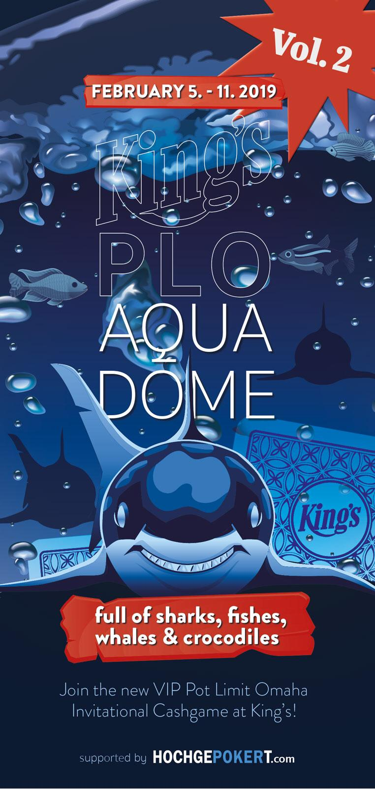 AquaDomeFlyer2019